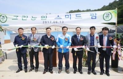 KT, 전남 보성에 '스마트팜' 실증단지 개소