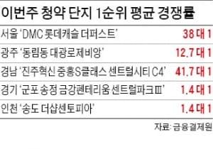 DMC 롯데캐슬 경쟁률 38 대 1…올 '서울 최고'