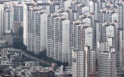 "OECD 전문가 ""韓 가계부채 해결해야…LTV·DTI 강화 적절"""