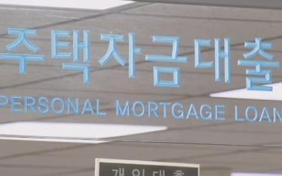 LTV·DTI 강화 첫날, 주택담보대출 신청액 절반 가까이 줄어