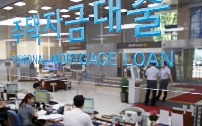 장래소득 감안 新DTI 연내 도입… DSR 고위험 대출 한도규제 검토