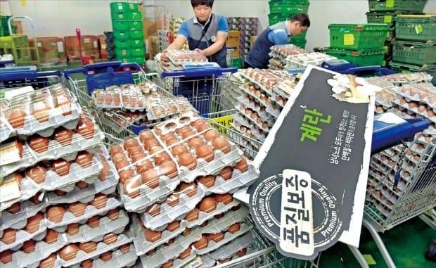 정부가 국내 농가 계란에서 살충제 성분이 검출됐다고 발표한 직후인 15일 주요 대형마트·백화점·슈퍼·편의점들이 계란 판매를 중단했다. 서울 시내 한 대형마트에서 직원들이 상품 매대에서 수거한 계란을 정리하고 있다. (자료 = 한경DB)