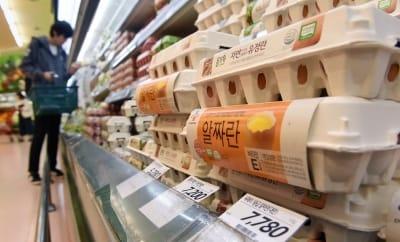 산지가 폭락…대형마트 3사 오늘부터 계란 가격 일제 인하