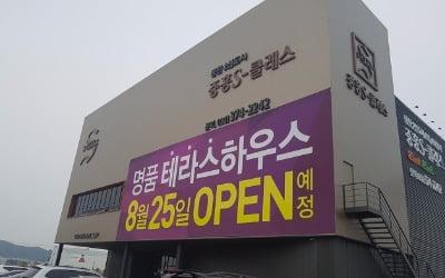 동탄2신도시 중흥S-클래스 더테라스 뜯어보기