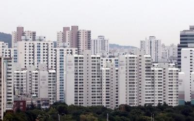 서울 12곳 분양가 상한제 '사정권'… 강남 재건축 타격