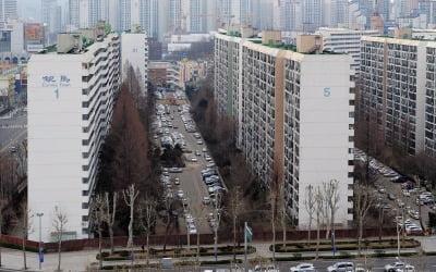 '49층 vs 35층'…은마아파트, 운명의 날