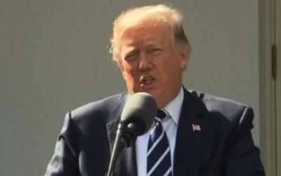 """""""트럼프 밖에 없다"""" 꼭지점까지 차오른 뉴욕 증시의 희망, 트럼프"""