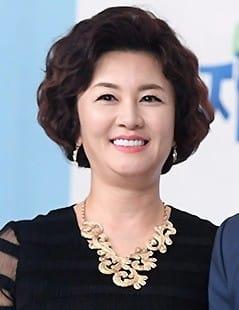 김혜선 세금 체납