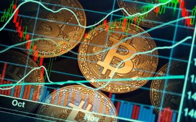파죽지세 비트코인…미국에서 1만2000달러, 한국에선 1만4000달러 돌파