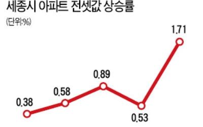 세종시 전세가격 '꿈틀'… 4년8개월 만에 상승폭 최대