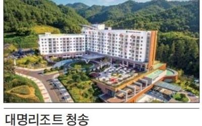 대명리조트 청송, 年30박 주왕산 경관형 힐링 리조트