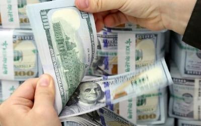 해외 투자 수익에 환차익까지… 달러 상품이 뜬다