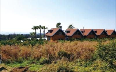 [한경 매물마당] 단양군 귀촌 및 농장용 토지 등 10건