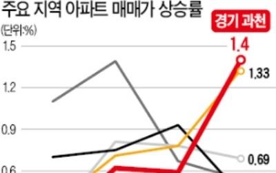 강남 재건축 '주춤'… 강북엔 '풍선효과'