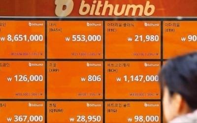 비트코인 폭락… 한때 800만원 붕괴