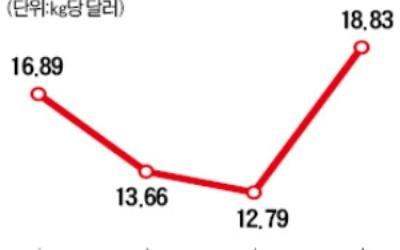 """""""폴리실리콘 값 더 오른다""""… OCI·한화케미칼 '화색'"""