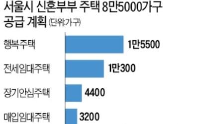 신혼부부용 주택 8만5000가구… 서울시, 2022년까지 공급한다