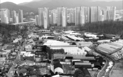 """서초구 """"양재·내곡동 3곳 그린벨트 풀어달라"""""""