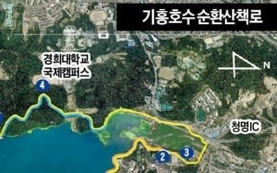 기흥호수 10㎞ 순환산책로 완성… 300만 시민의 명품 휴식공간으로