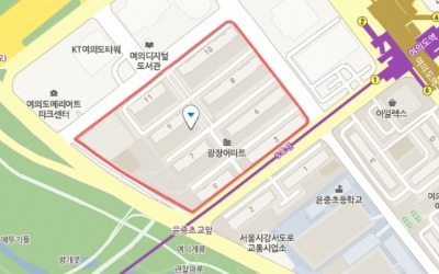 여의도 광장 28번지, 한자신과 신탁방식 재건축