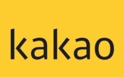 카카오, 블록체인 자회사 설립… 가상화폐 발행 여부 관심