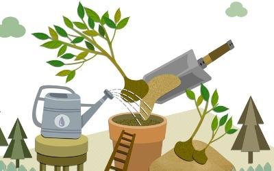 미세먼지 속 미래세대 …'식목일 2.0' 절실한 이유