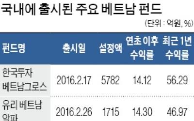 베트남 펀드 '나홀로 승승장구'
