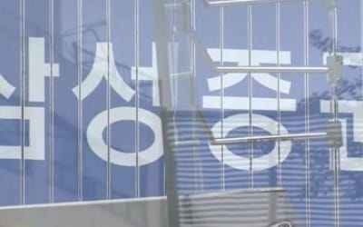 금감원 全증권사 계좌관리시스템 점검… 삼성증권 특별점검