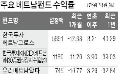 잘나가던 베트남펀드에 무슨 일이… 한 달 새 12.6% 손실 '급브레이크'