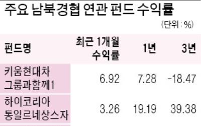 주식형펀드 시장 판도 흔드는 '남북경협 테마'
