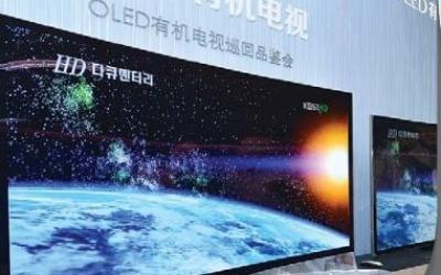 OLED 기술 통째로 넘기라는 중국