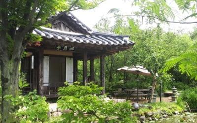 """[집코노미] """"북적북적""""…옮겨 지은 문화재 지정 전통한옥에 야생화 정원 조성했더니"""