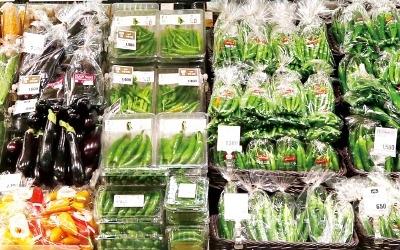 채소값 13.5% 껑충… '밥상물가' 고공행진
