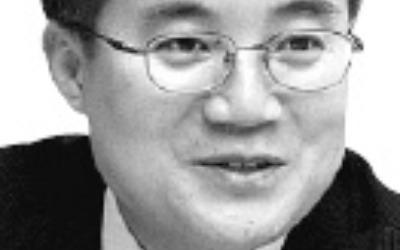신흥국 가상화폐發 '화폐개혁 논쟁' 불붙나