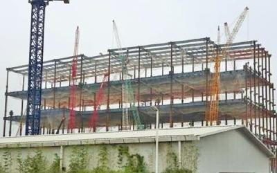 광저우 공장 10개월 승인 지연… LGD 'OLED 세계전략' 비상
