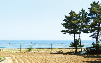 '센토사 합의'에 파주·고성 부동산 '들썩'
