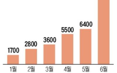 '후발 주자' 신한금투, 헤지펀드 수탁액 1兆 넘었다