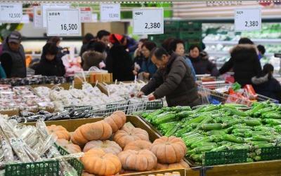 농산물 가격 상승에 장바구니 물가 부담 커졌다
