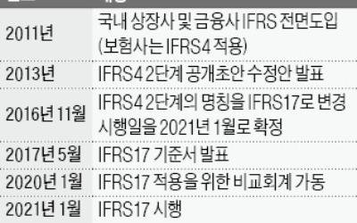 """IFRS17 준비 기간 1년 더 달라""… '총대 메고' 요청한 한국 보험업계"