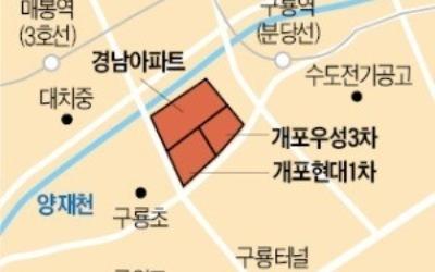 통합 재건축 '개포경남' 전용 96㎡ 16.5억원에 거래