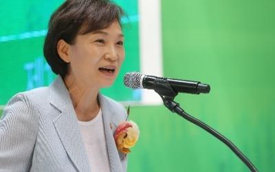 """김현미 국토부 장관, 박원순 '용산·여의도 플랜'에 우려…""""중앙정부와 협의해야"""""""