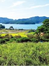 [한경 매물마당] 충남 서산시 바닷가 전원지 등 6건