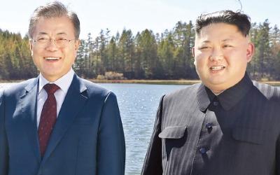 """서울 답방 약속한 김정은 """"태극기부대 반대 상관 안해"""""""