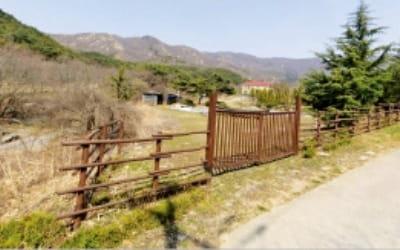 [한경 매물마당] 강남 신논현역 먹자거리 빌딩 등 17건