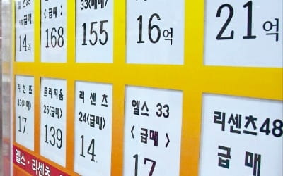 강남 아파트 호가 한달새 1억 '뚝'…서울 거래 건수도 75% 급감