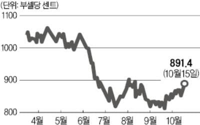 무역분쟁 속 美 대두값 반등…국내 ETF 하루새 2.7% 올라