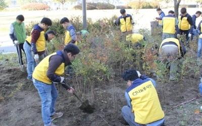 CJ대한통운 건설부문, 한강 고수부지에 조팝나무 1800그루 심어