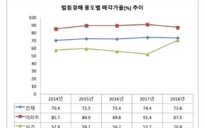 """경매시장서 상가 '인기'…""""다주택자 규제 풍선효과"""""""
