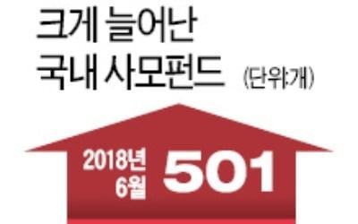 토종 행동주의펀드의 '공습'…한진칼 겨눈 KCGI '경영 개입' 신호탄 쏴