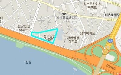한강변 50층 꿈꾸는…24년차 성수동 '청구강변'